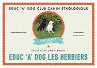 club dressage chien vendée